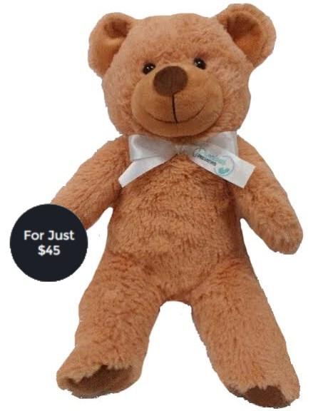 http://preciouspreviews.com.au/wp-content/uploads/2015/12/teddy-pricing2.jpg