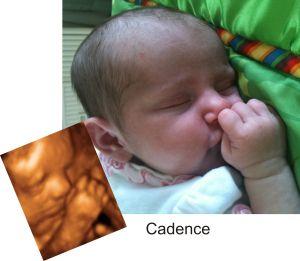 http://preciouspreviews.com.au/wp-content/uploads/2016/08/Cadence11.jpg