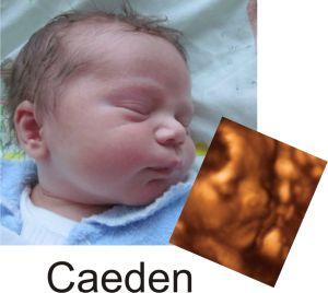http://preciouspreviews.com.au/wp-content/uploads/2016/08/Caeden12.jpg