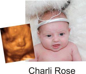 http://preciouspreviews.com.au/wp-content/uploads/2016/08/Charli-Rose13.jpg